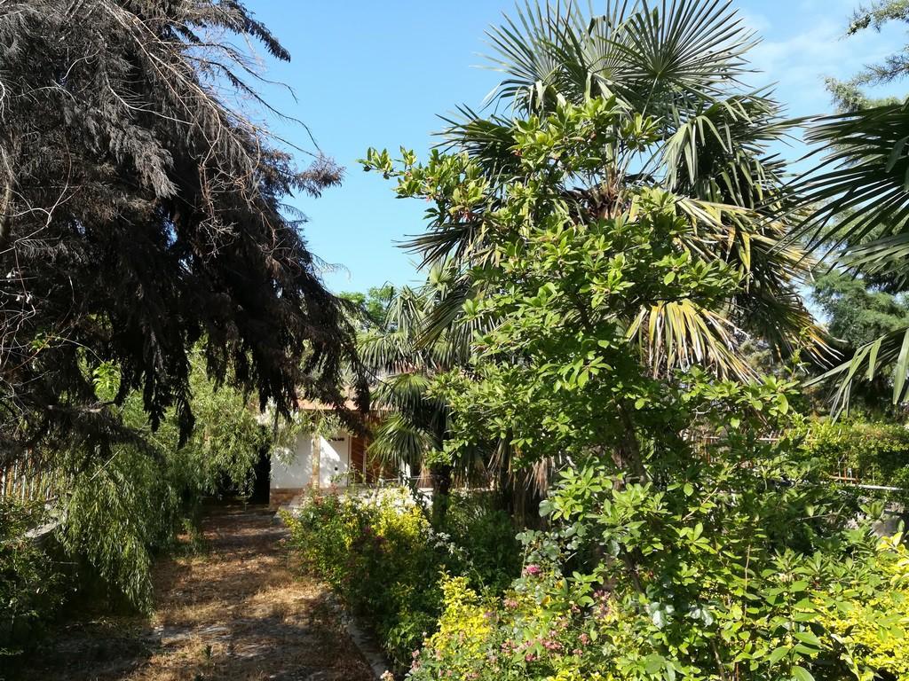 خرید باغ ویلا در سیسنگان
