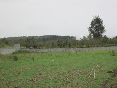 فروش زمین در چمستان
