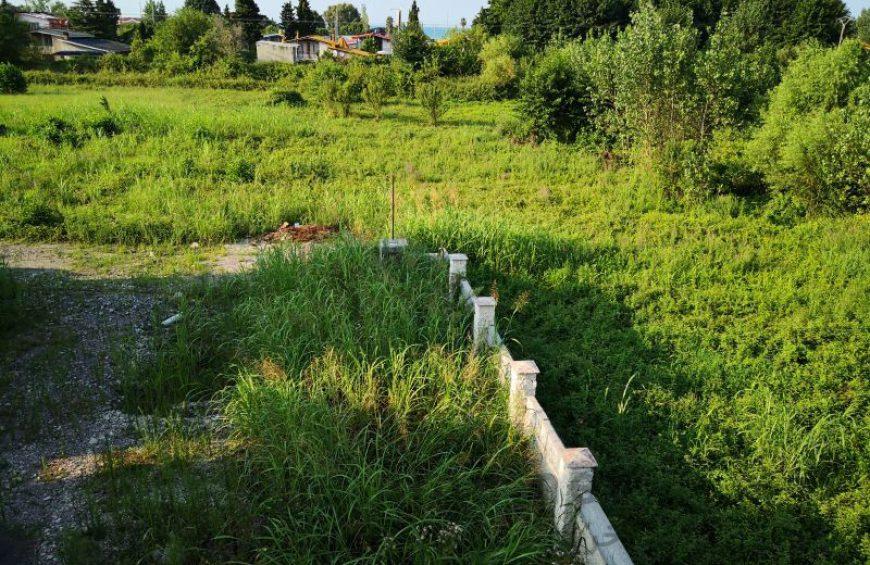 خرید زمین جنگلی در نمک آبرود