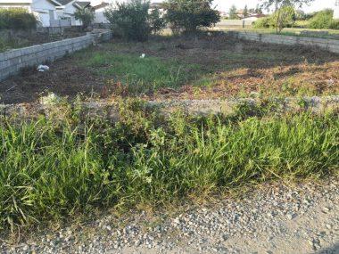 فروش زمین شهرکی در هچیرود