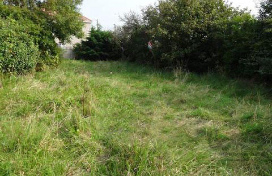 خرید زمین با موقعیت عالی در جیسا – کلارآباد