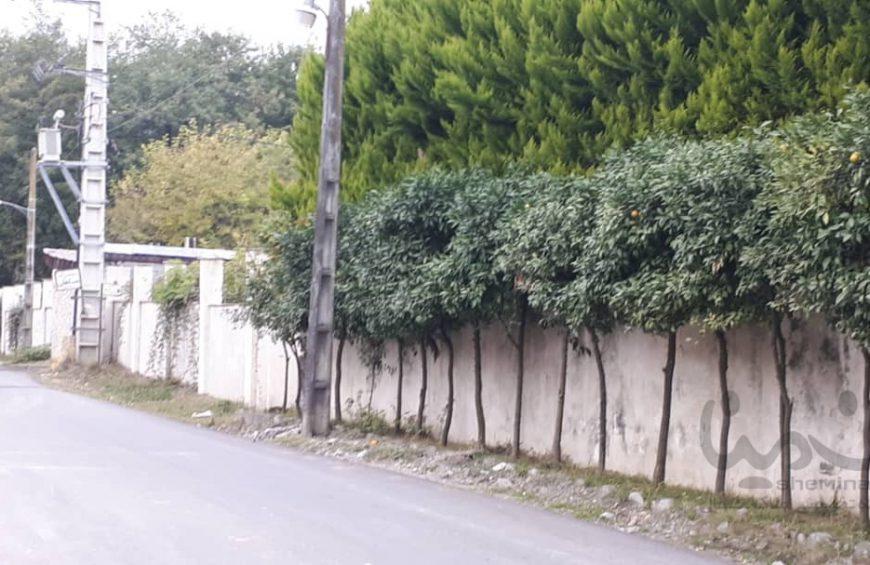 فروش زمین در بورایش عباس آباد