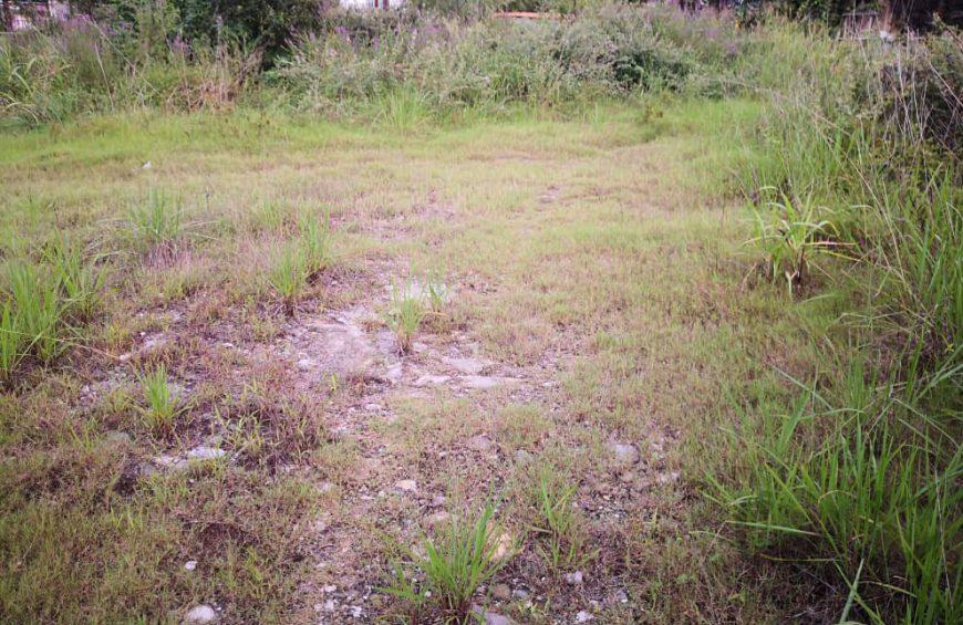 خرید زمین در وربن – متل قو
