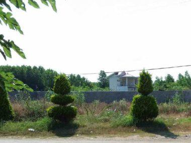 فروش زمین مسکونی در امرج کلا – عباس آباد