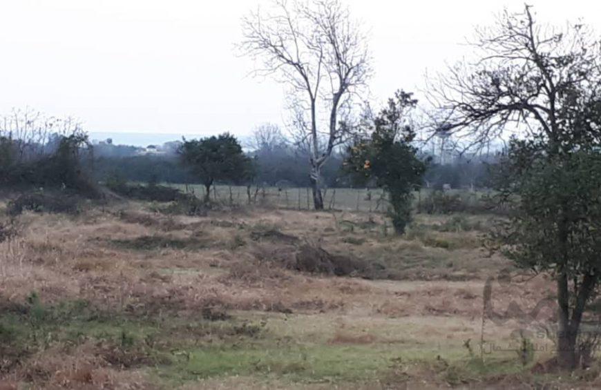 خرید زمین در متل قو – دانیال