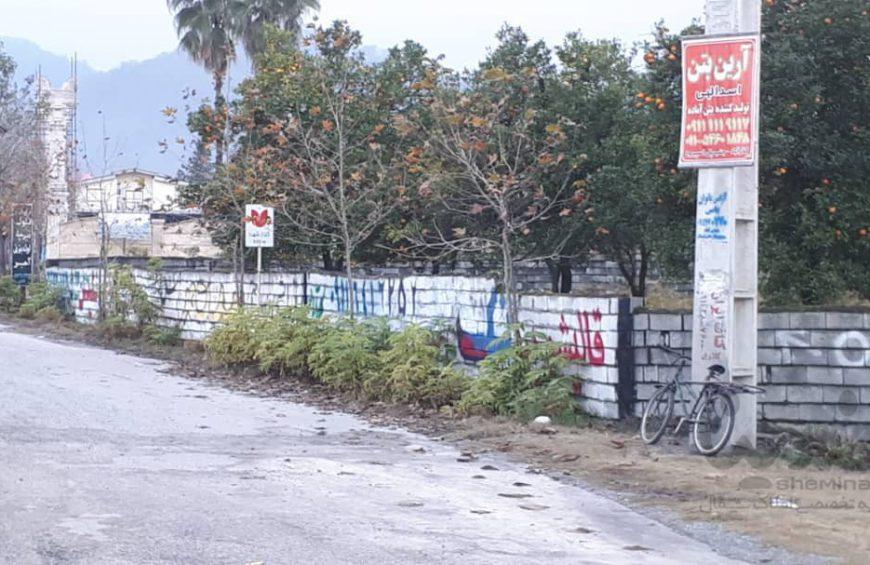 فروش زمین در کلارآباد – کلارآباد بالا