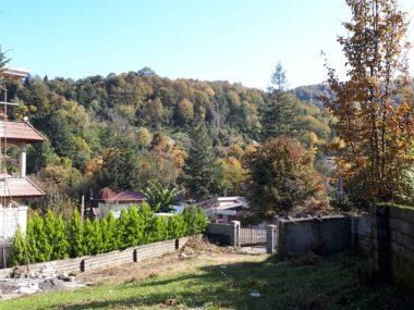 خرید زمین با موقعیت جنگلی در متل قو – دانیال
