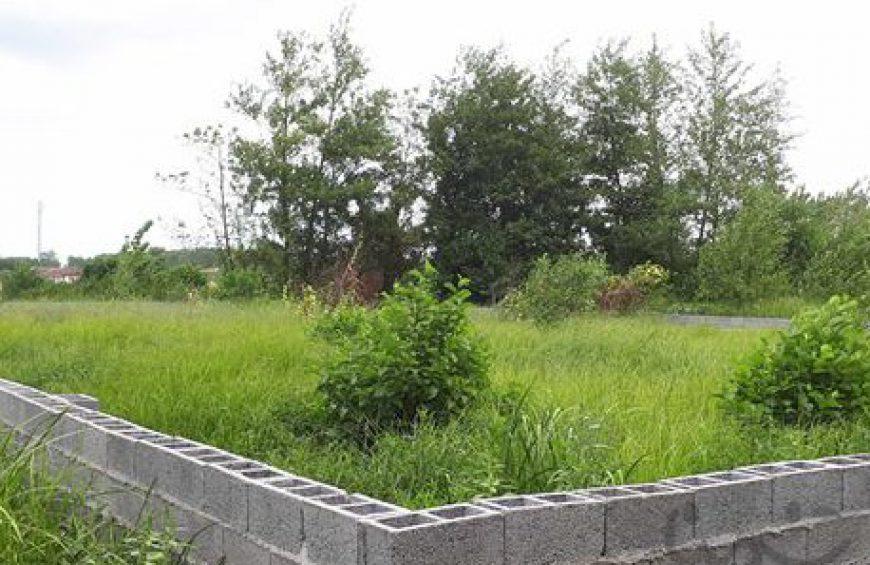 خرید زمین در کلارآباد – میانکی