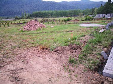 خرید زمین در عباس آباد با موقعیت عالی – امرج کلا
