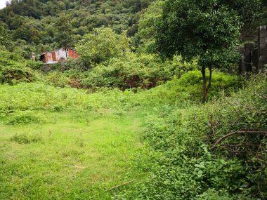 خرید زمین در دنیال متل قو – دارای جواز ساخت