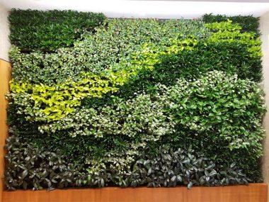 استفاده از دیوار سبز برای ویلای شمال