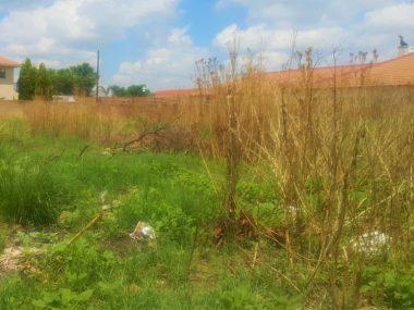 فروش زمین در عباس آباد با موقعیت عالی – کرکاس