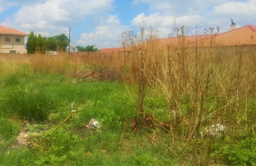خرید زمین در منطقه زیبای کلارآباد