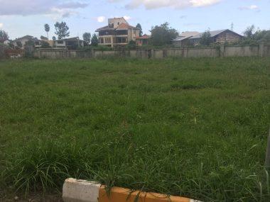 خرید زمین در نوشهر سنگ سرا