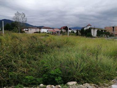 خرید زمین جنگلی در مزگا نوشهر