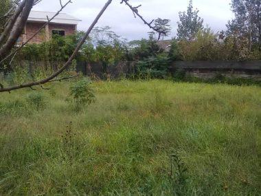 فروش زمین در نوشهر – حوض کتی