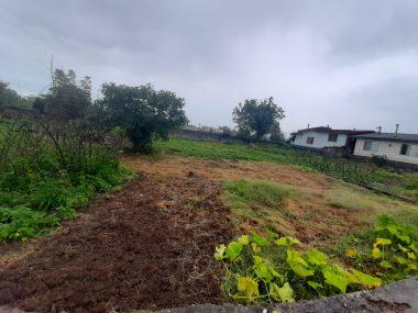 خرید زمین در کلاردشت مکارود