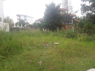 خرید زمین در کلاردشت سنار