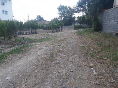 خرید زمین در کلاردشت برار