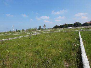 خرید زمین در چالوس رادیودریا