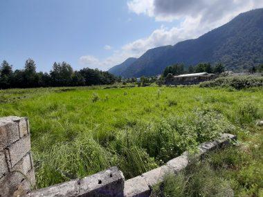 خرید زمین در چالوس فرج آباد