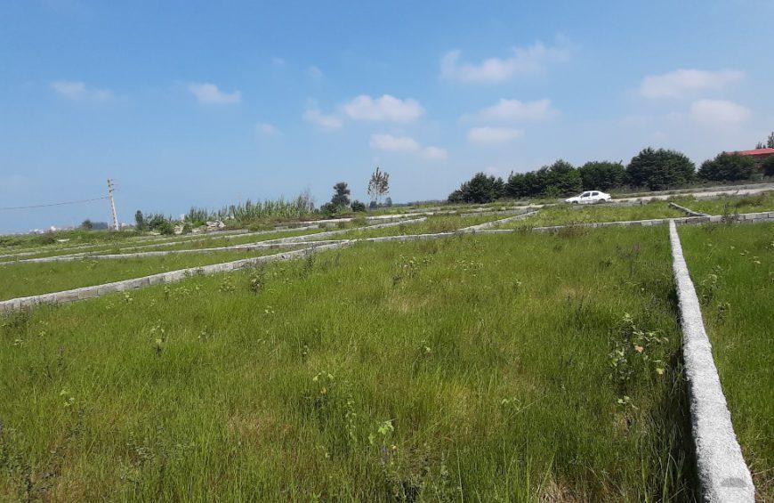 خرید زمین در سرداب رود چالوس