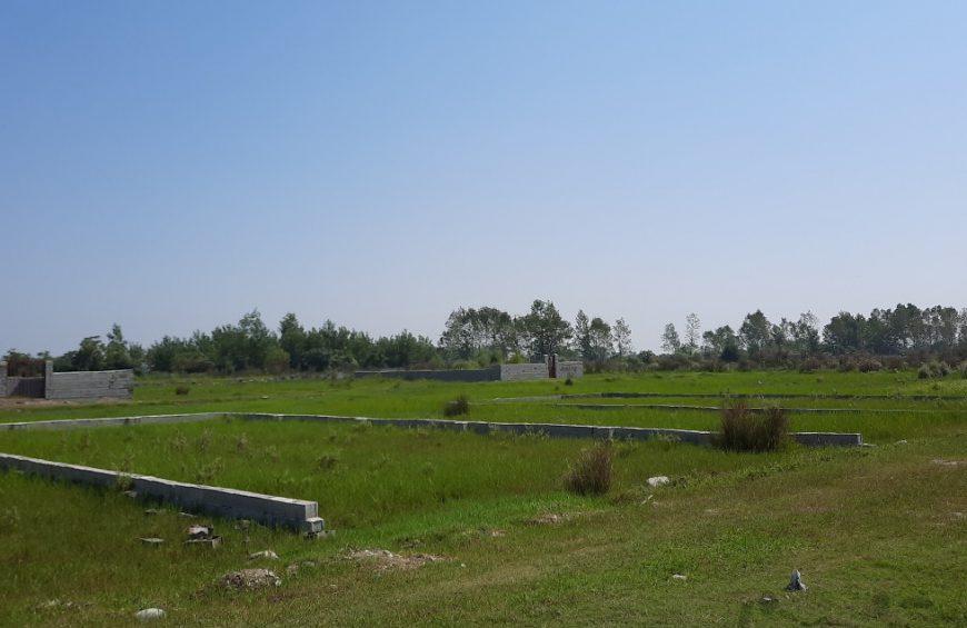 خرید زمین در چالوس میانکی